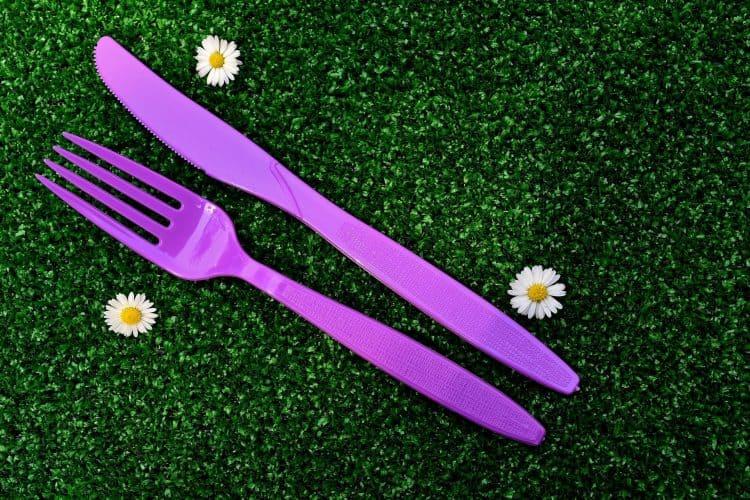 כלים חד פעמיים לכל אירוע ברמת גן (צילום: pixabay)